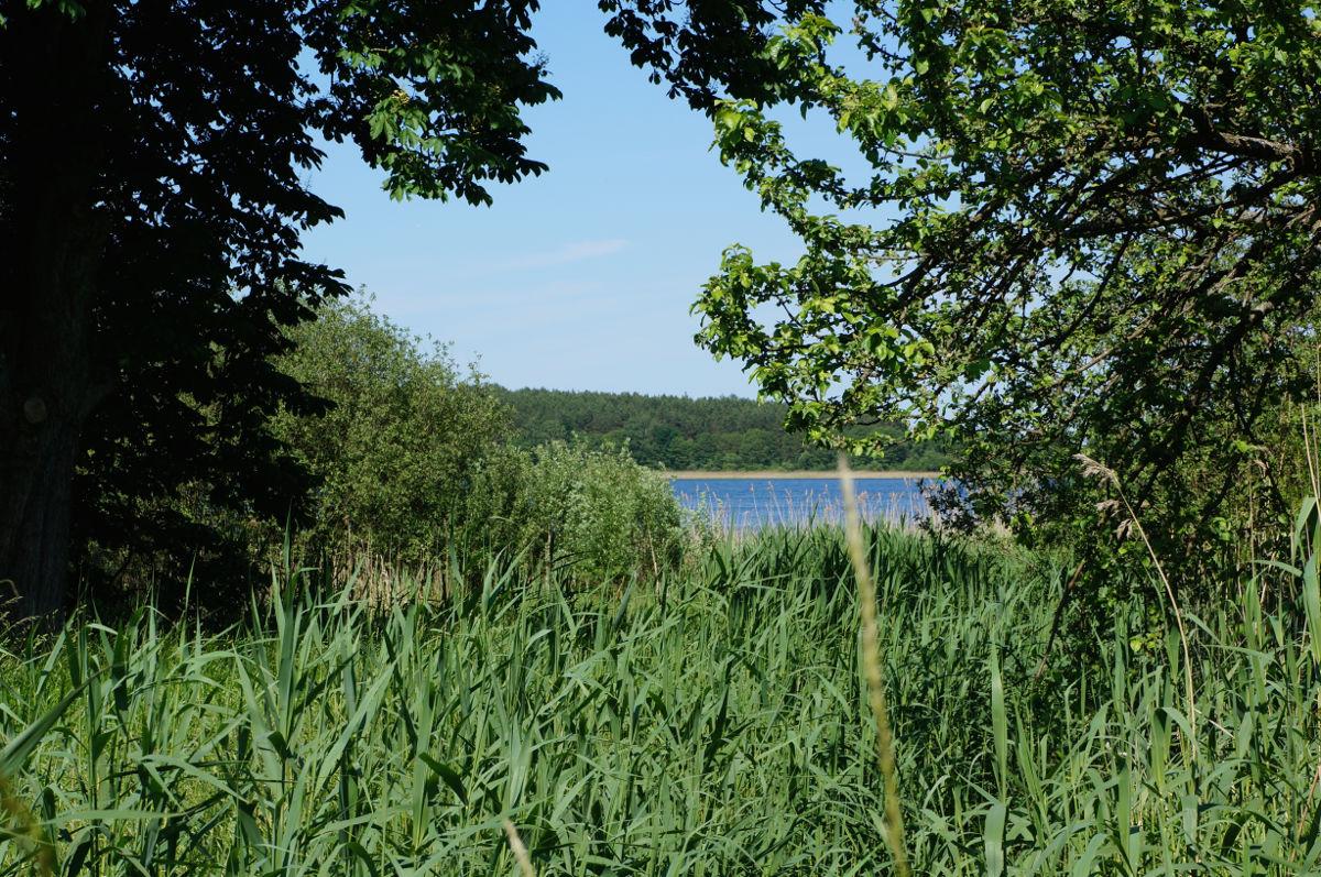 Blick auf den Loppiner See
